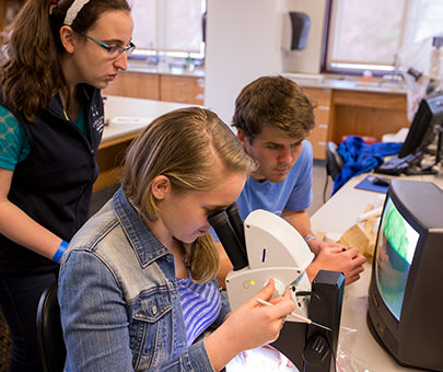 Three students study plants through a microscope.